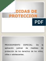 ppt proteccion clase profesor Pedro Escobar
