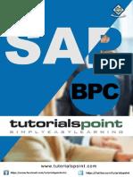sap_bpc_tutorial.pdf