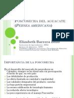 Clase Poscosecha Aguacate Completa