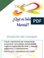 Salud Mental 2013