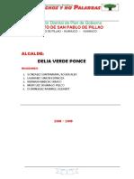 Plan de Gobierno Dist Pillao 06-09-17