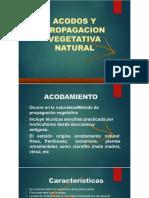 3. ACODOS.pptx