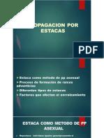 2. ESTACAS