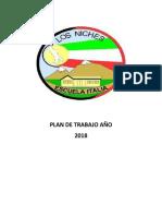 PLAN DE TRABAJO AÑO 2017.docx