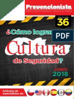 Revista El Prevencionista Edición 36