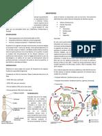2.1 HIDIATIDOSIS.docx