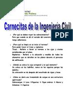 carnecitas de la ing civil.doc