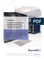 White Paper Risk Management in Software Development