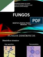 Monitoria Fungos.pdf