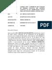 Conclusiones de Demanda, Inmunidad de Acta de Nacimiento