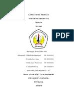 Program P0601