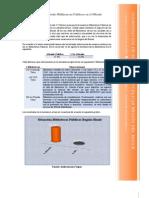Penúltimo Informe Bibliotecas_Maule_29-09-2010