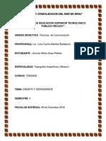 ENSAYO Y MONOGRAFIA 2016.docx