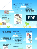Leaflet Disentri Ayyi