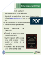 Archivo Acreditacion SSGB y SSBB [Ejemplos] (1)