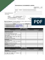 Informe de Desempeño Laboral - Presentar