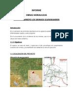 INFORME Obras Hidraulica Guayaramerin