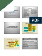 paln desarrollo.pdf