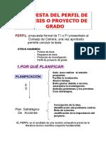 perfil de tesis.doc