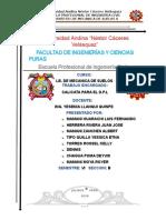 CALICATA PARA EL DPL.docx