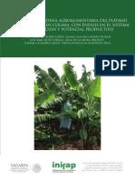 4561 Análisis de La Cadena Agroalimentaria Del Platano