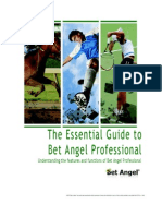 Bet Angel Reference Guide