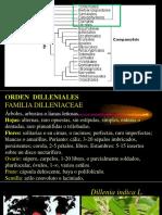 - CLASE 8 (1) fanero.pptx