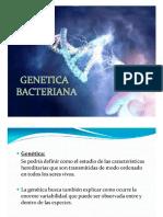 Genética Introducción