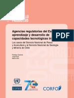 Agencias Regulatorias Del Estado, Aprendizaje y Desarrollo de Capacidades Tecnológicas Internas