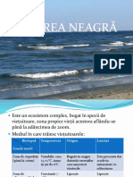 Marea Neagra-PPT.pptx