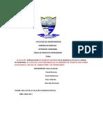PERFIL DE PROYECTO BRIAN BENALCAZAR.docx