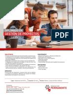 Flyer Gestion de Proyectos PDF