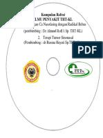 Format CD THT refrat.docx
