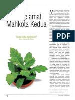 Operasi Kanker Payudara Batal Setelah Mengkonsumsi Daun Dan Umbi Dewa [Trubus 548 - Juli 2015 XLVI]