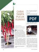 Cabai Tanpa Pucuk Kuning [Trubus 546 - Mei 2015 XLVI]