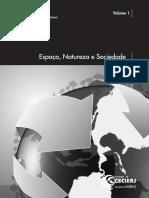 56151.pdf