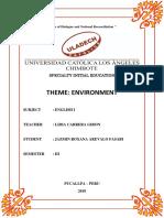 Monografia Medio Ambiente - EN INGLÉS