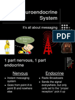 The Neuroendocrine System
