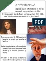 BACTERIAS FITOPATOGENAS.pptx