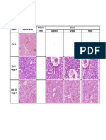 Tabel Perbandingan Histopatologi Hepar