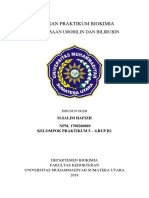 M.Salim hafizh_1708260069_Kelompok 5 B2_Pemeriksaan Urobilin dan Bilirubin.docx