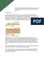animaltissues.pdf