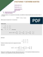 08d.-MENORES-COFACTORES-Y-DETERMINANTES[1].pdf