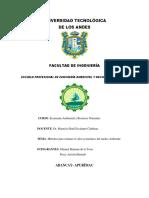Universidad Tecnológica Economia Ambiental