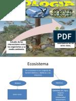 1.Introducción a La Ecología