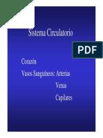 02 - Generalidades de Los Vasos Sanguineos.pdf
