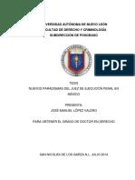 1 Nvos Paradigmas Del Juez de Ejecución Penal en Méx 2014