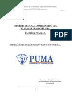 Informe semanal PUMA S.A.   Semana del 13 al 19 de Junio 2014 (1).docx