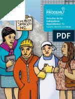 Nº3 Derechos Trabajadoras Asalariadas Dependientes