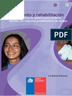 CONACE - (2006) Proyectos de tratamiento y rehabilitación con perspectiva de género para mujeres adultas.pdf